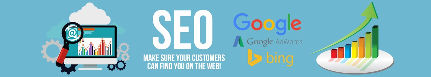 SEO Services, seo company in noida,seo company in India